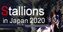 Stallions in Japan 2020