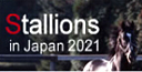 Stallions in Japan 2021
